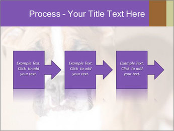0000071137 PowerPoint Templates - Slide 88