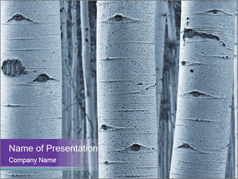 0000071141 PowerPoint Template