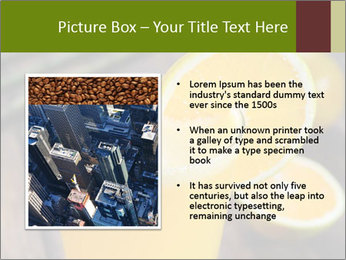 0000071145 PowerPoint Template - Slide 13