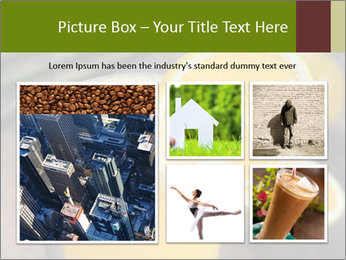 0000071145 PowerPoint Template - Slide 19