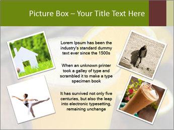 0000071145 PowerPoint Template - Slide 24