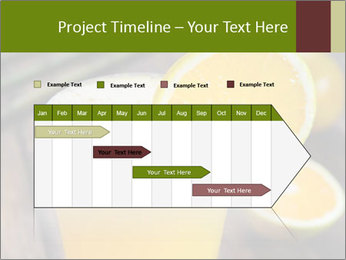 0000071145 PowerPoint Template - Slide 25