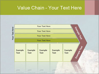 0000071147 PowerPoint Templates - Slide 27