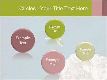 0000071147 PowerPoint Templates - Slide 77
