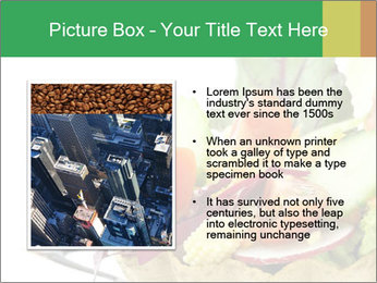 0000071199 PowerPoint Template - Slide 13