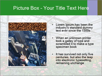 0000071201 PowerPoint Template - Slide 13