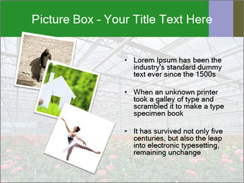 0000071201 PowerPoint Template - Slide 17