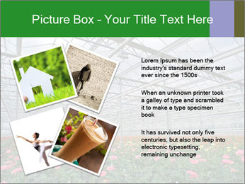 0000071201 PowerPoint Template - Slide 23