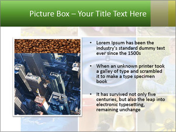 0000071209 PowerPoint Template - Slide 13