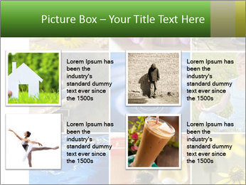 0000071209 PowerPoint Template - Slide 14
