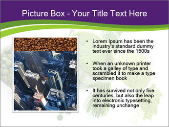 0000071210 PowerPoint Template - Slide 13