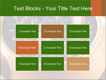 0000071213 PowerPoint Templates - Slide 68