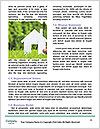 0000071214 Word Template - Page 4