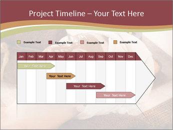0000071216 PowerPoint Templates - Slide 25