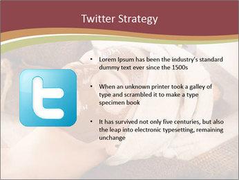 0000071216 PowerPoint Templates - Slide 9