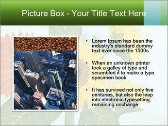 0000071227 PowerPoint Template - Slide 13