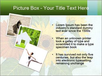 0000071227 PowerPoint Template - Slide 17