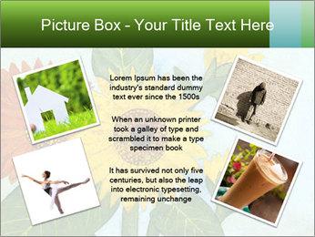 0000071227 PowerPoint Template - Slide 24
