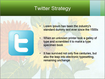 0000071227 PowerPoint Template - Slide 9