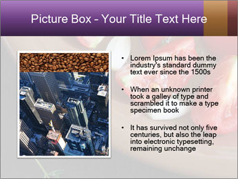 0000071228 PowerPoint Template - Slide 13