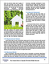 0000071234 Word Template - Page 4