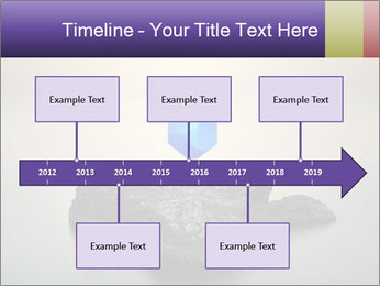 0000071236 PowerPoint Template - Slide 28