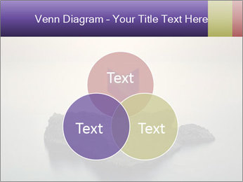 0000071236 PowerPoint Template - Slide 33
