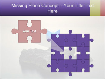 0000071236 PowerPoint Template - Slide 45