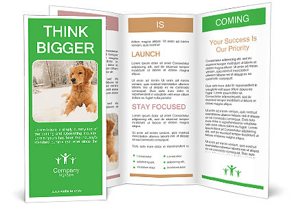 0000071238 Brochure Templates