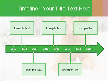 0000071238 PowerPoint Template - Slide 28