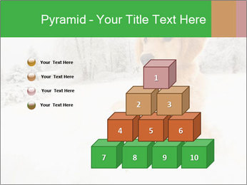 0000071238 PowerPoint Templates - Slide 31