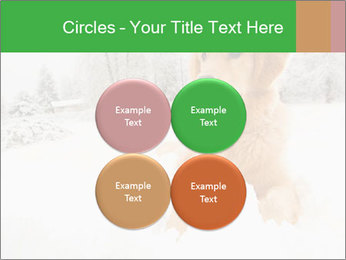 0000071238 PowerPoint Template - Slide 38