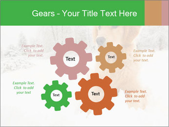 0000071238 PowerPoint Templates - Slide 47