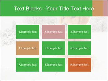 0000071238 PowerPoint Templates - Slide 68