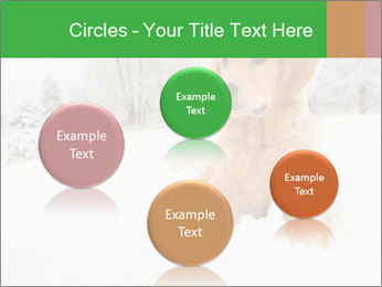 0000071238 PowerPoint Template - Slide 77
