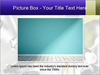 0000071245 PowerPoint Templates - Slide 15