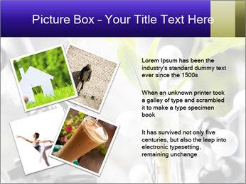 0000071245 PowerPoint Templates - Slide 23