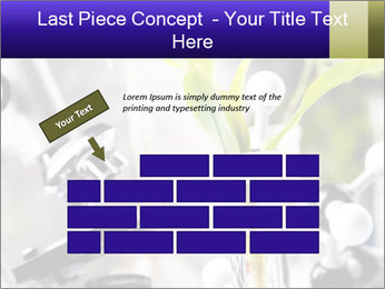 0000071245 PowerPoint Templates - Slide 46