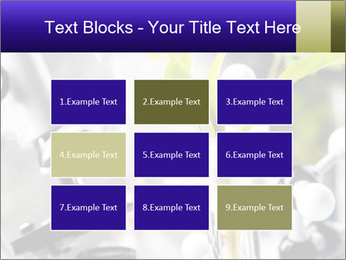 0000071245 PowerPoint Templates - Slide 68