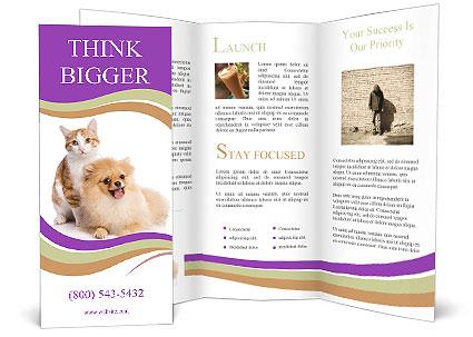 0000071251 Brochure Templates