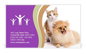 0000071251 Business Card Templates