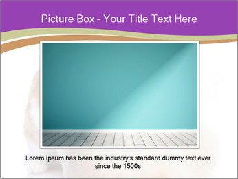 0000071251 PowerPoint Template - Slide 15