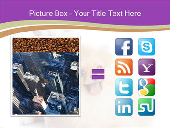 0000071251 PowerPoint Template - Slide 21
