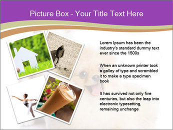 0000071251 PowerPoint Template - Slide 23