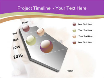 0000071251 PowerPoint Template - Slide 26