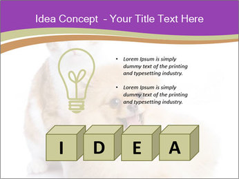 0000071251 PowerPoint Template - Slide 80