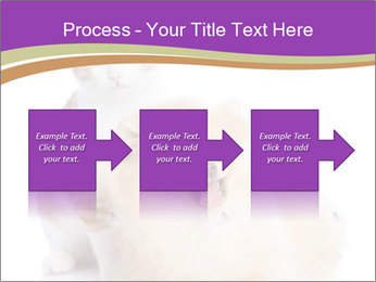 0000071251 PowerPoint Template - Slide 88