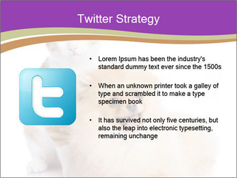 0000071251 PowerPoint Template - Slide 9