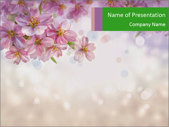 0000071265 PowerPoint Template