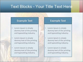 0000071271 PowerPoint Templates - Slide 57